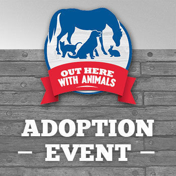 Tractor Supply plans pet and animal adoptions and activities tomorrow