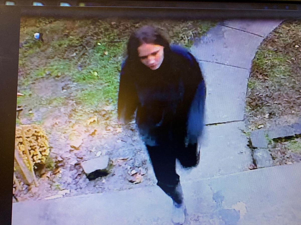 Putnam County suspect 1