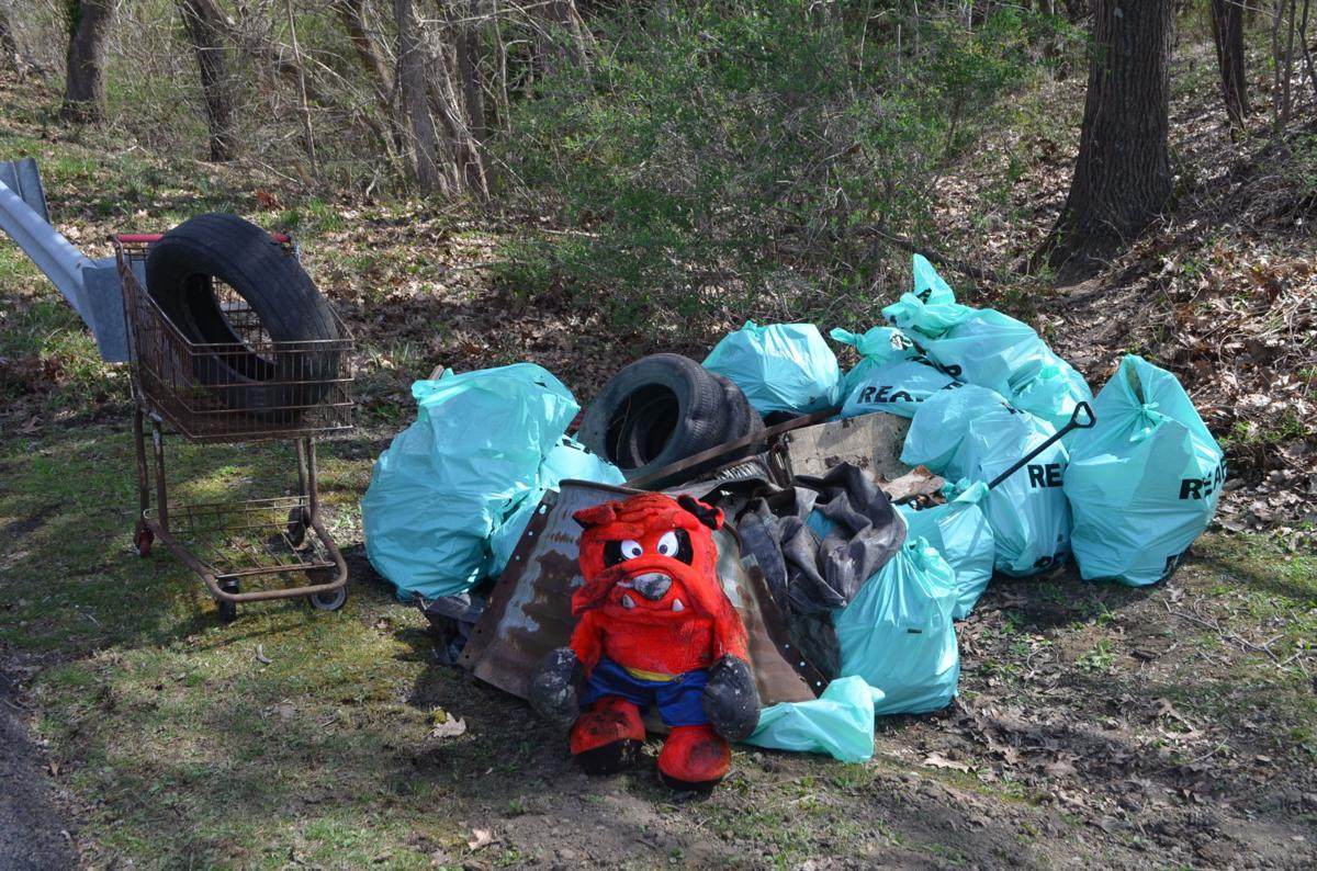 Stream Cleanup - trash