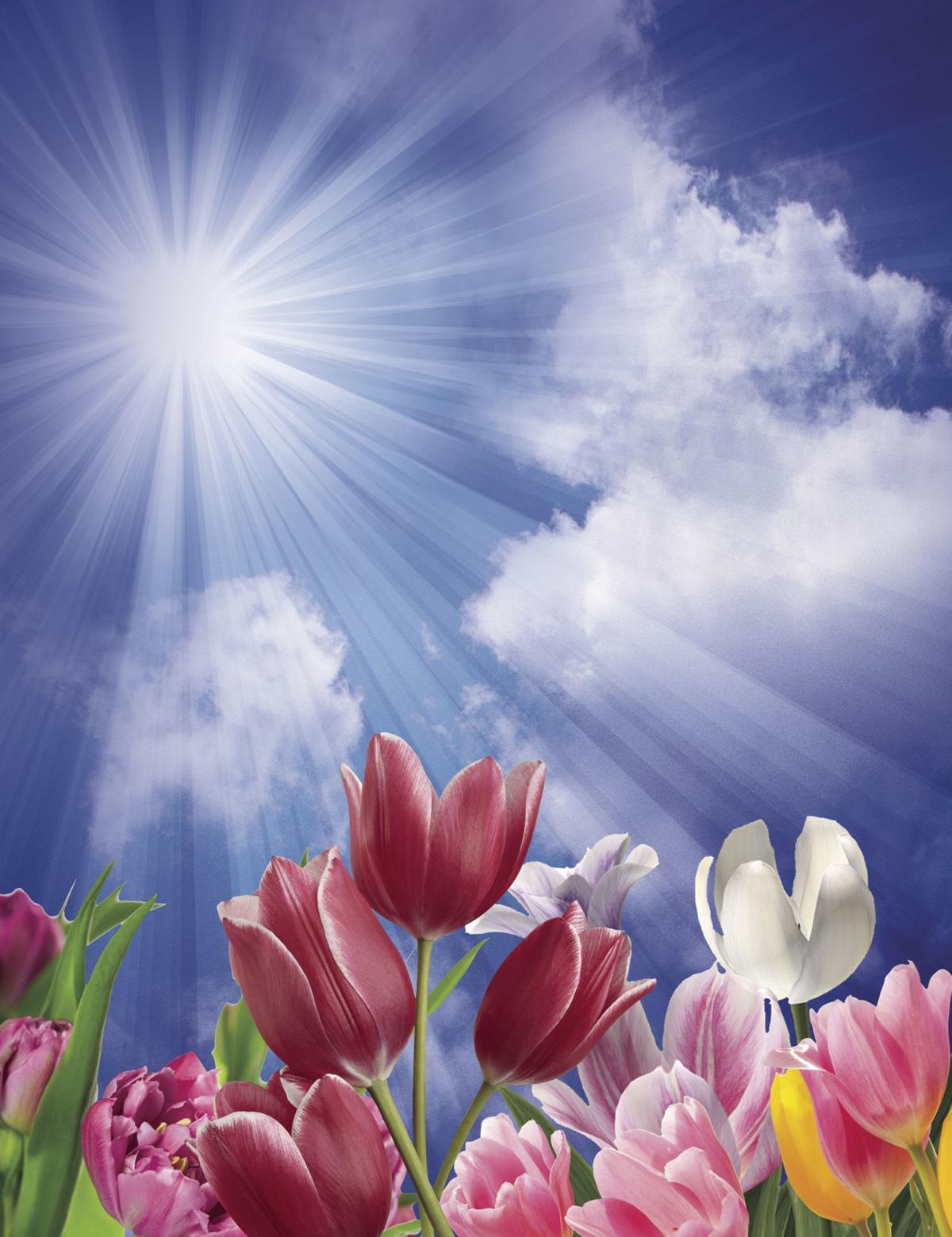 Helen June Brown Winters | Obituaries | wvnews com