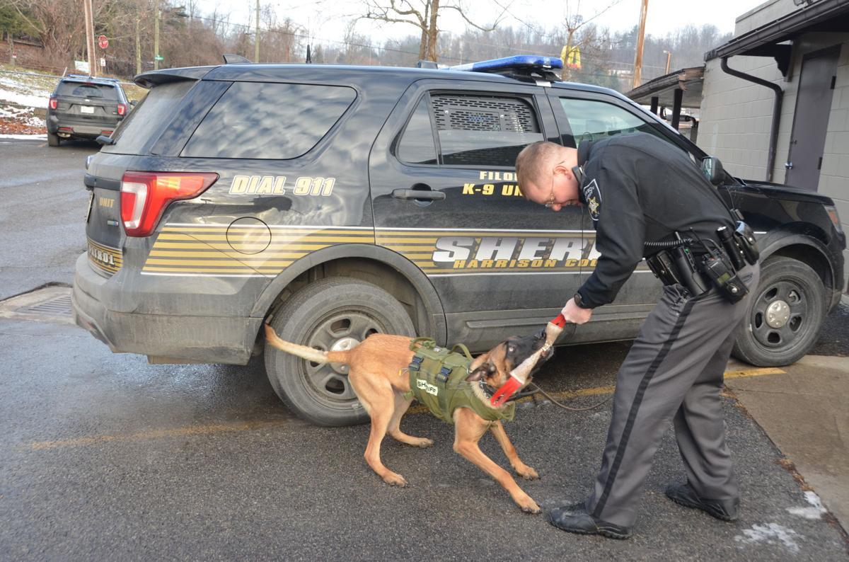 Harrison Sheriff Matheny adds multi-purpose K-9 to patrol