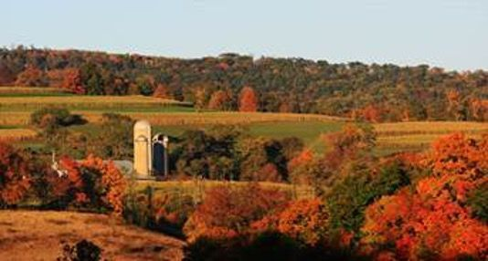 Farm with fall leaves