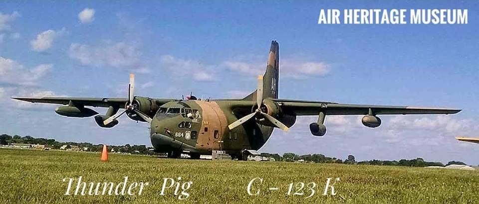 Thunder Pig