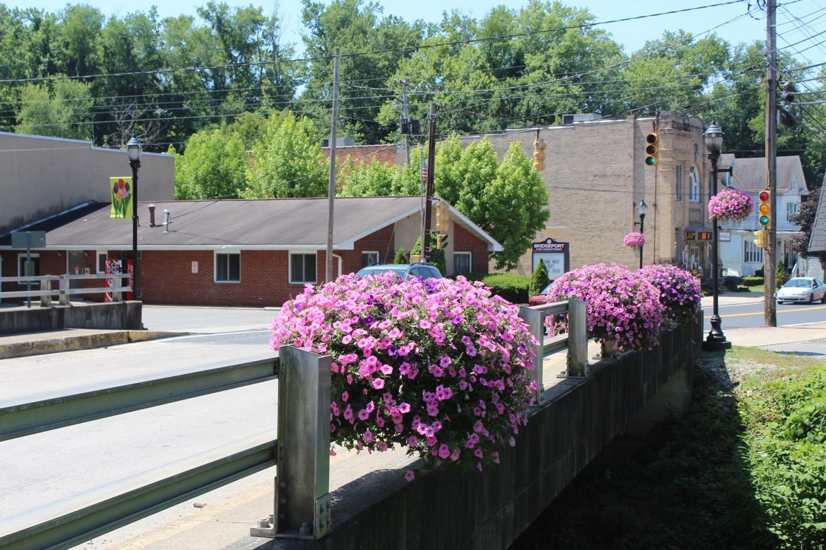 Bridgeport flowers