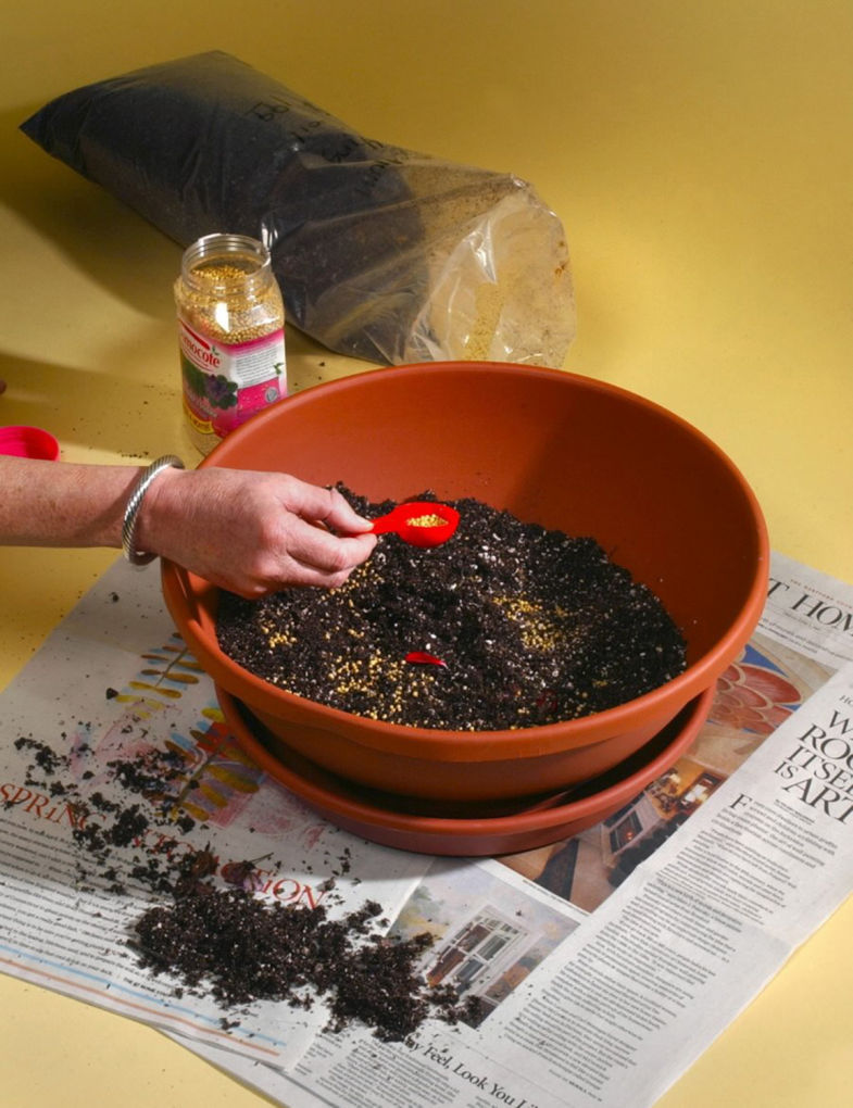 Container gardening know-how: Horticulture specialist shares tricks ...
