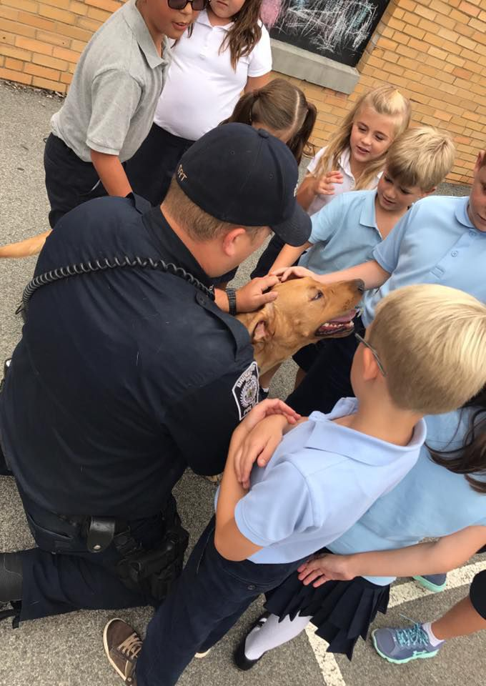 Petting the K-9s