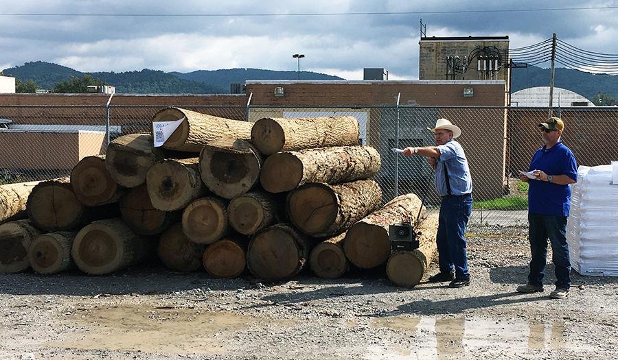 Log-a-Load for Kids Log Auction