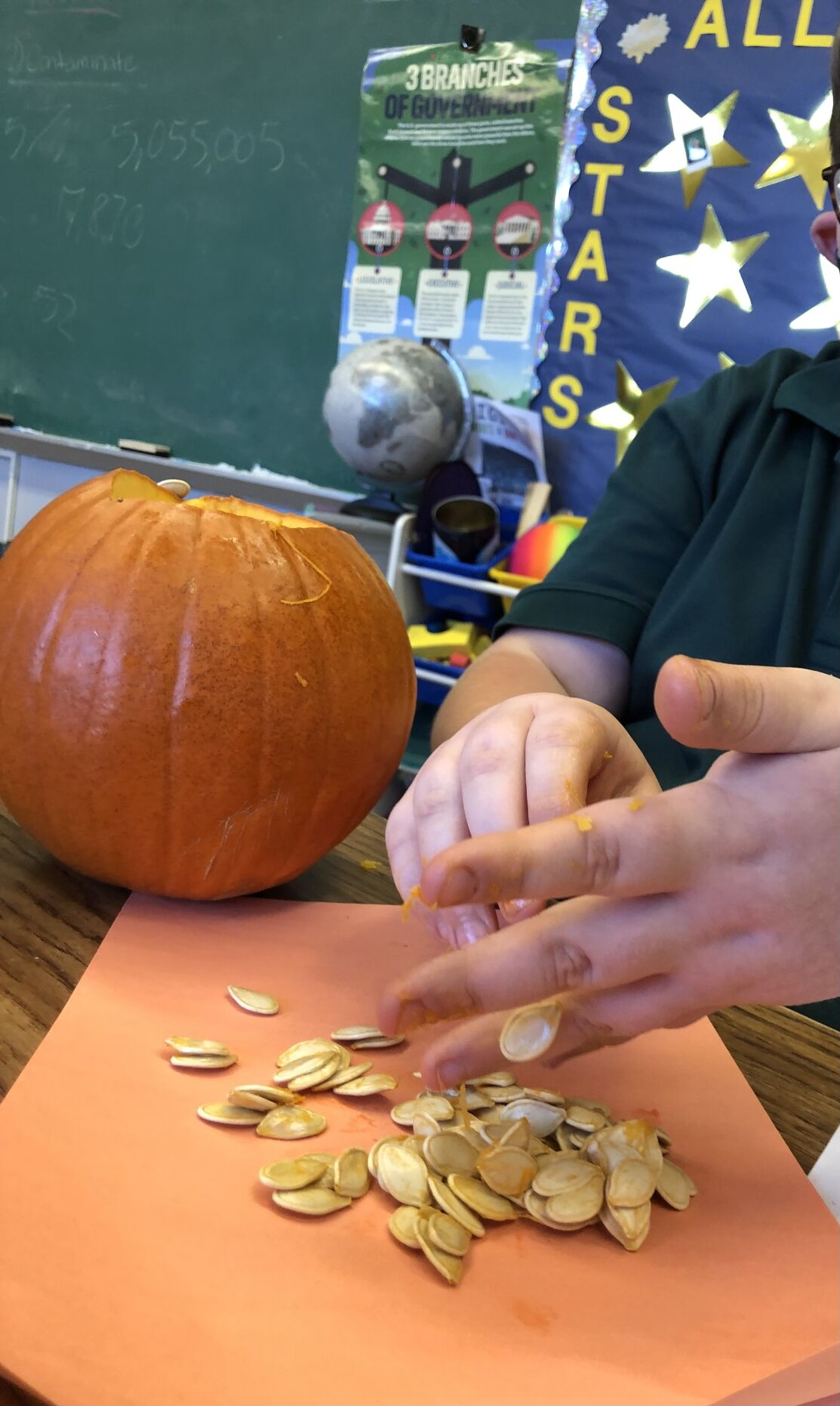 St. Patrick students learn decomposition
