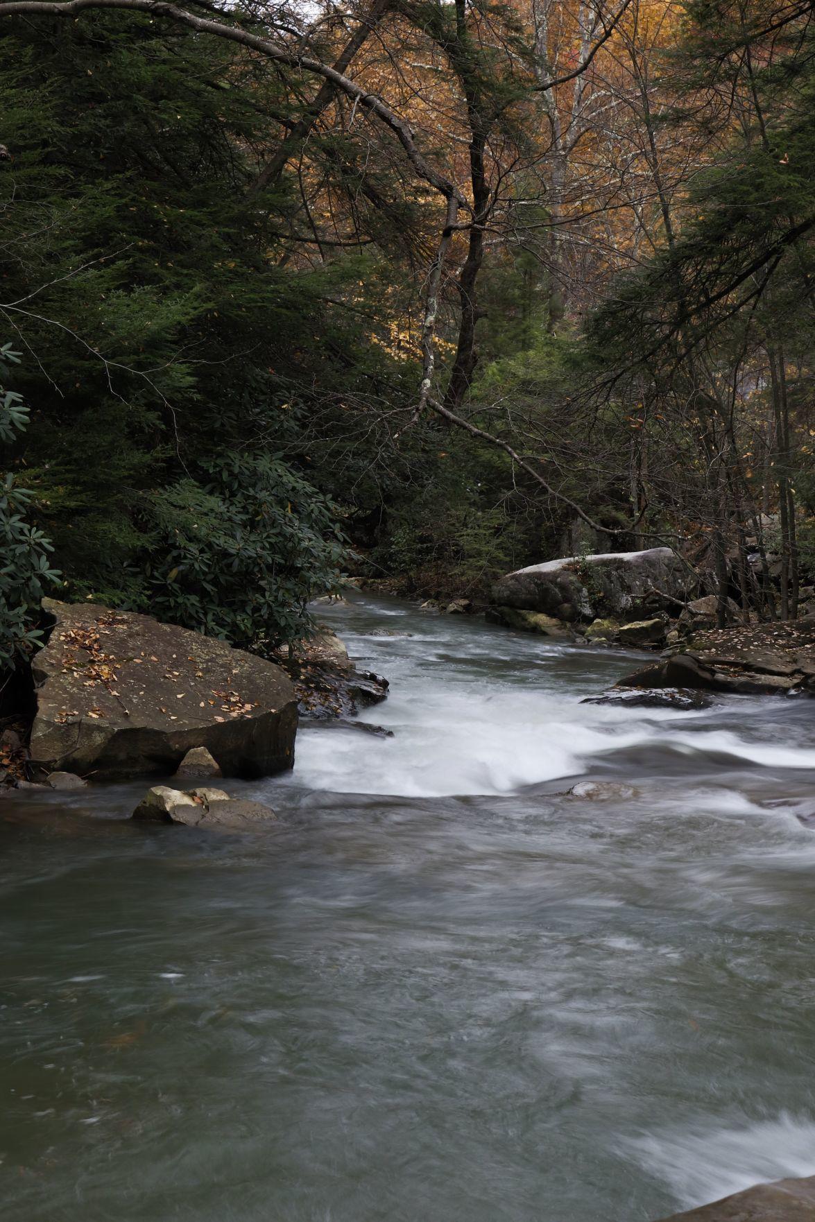 Preston Pride: Deckers Creek