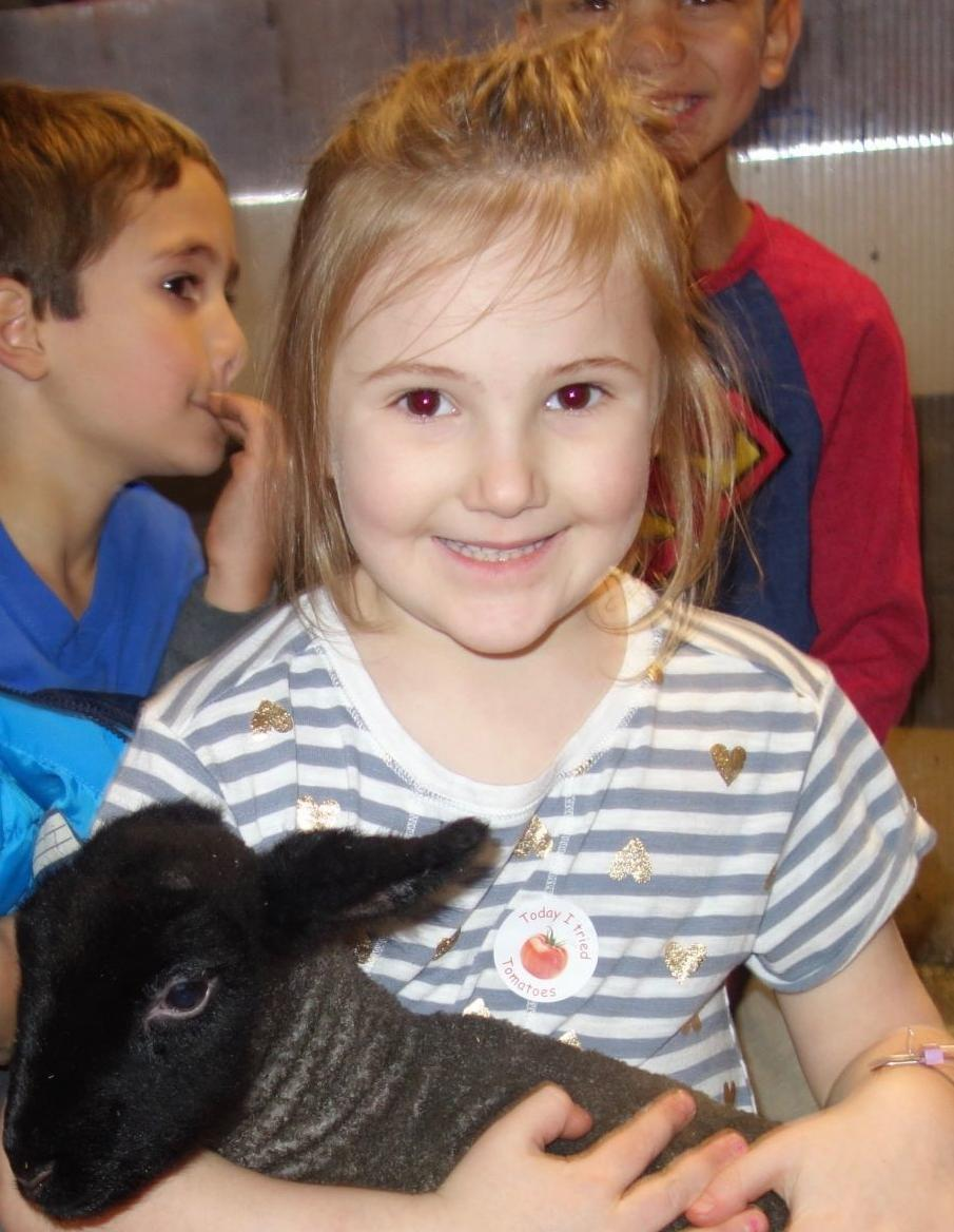 Sunshine Farm teaches many lessons at Crellin Elementary