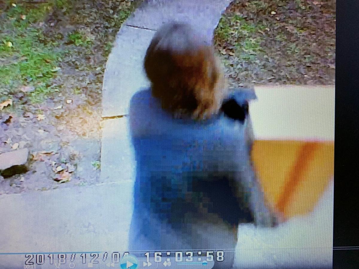 Putnam County suspect 2