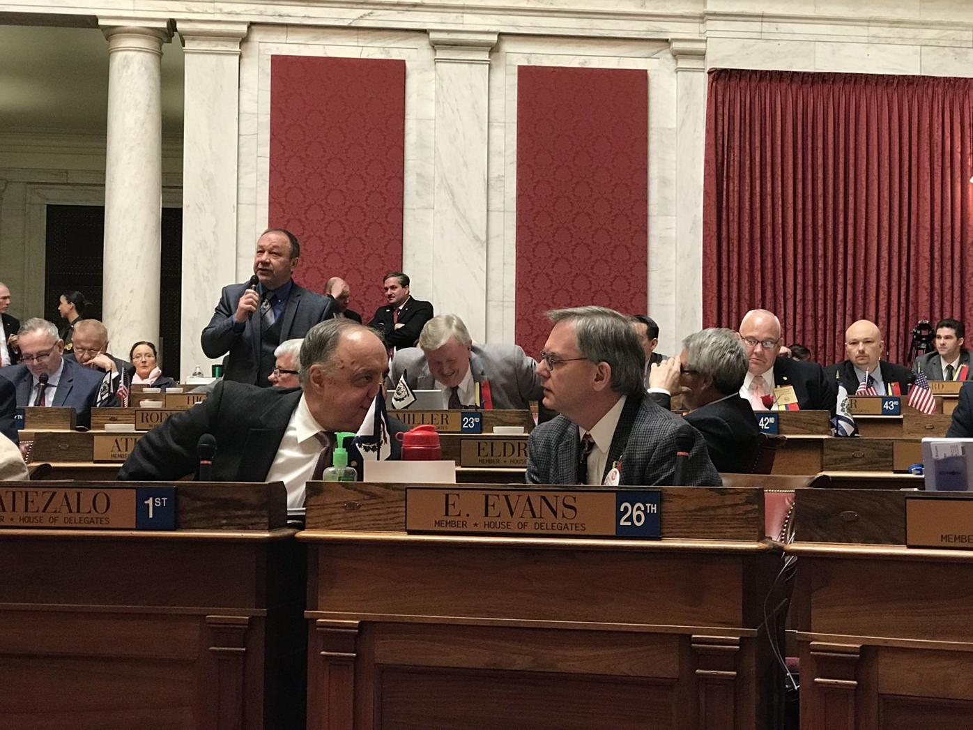 Delegates vote on proposing constitutional amendment