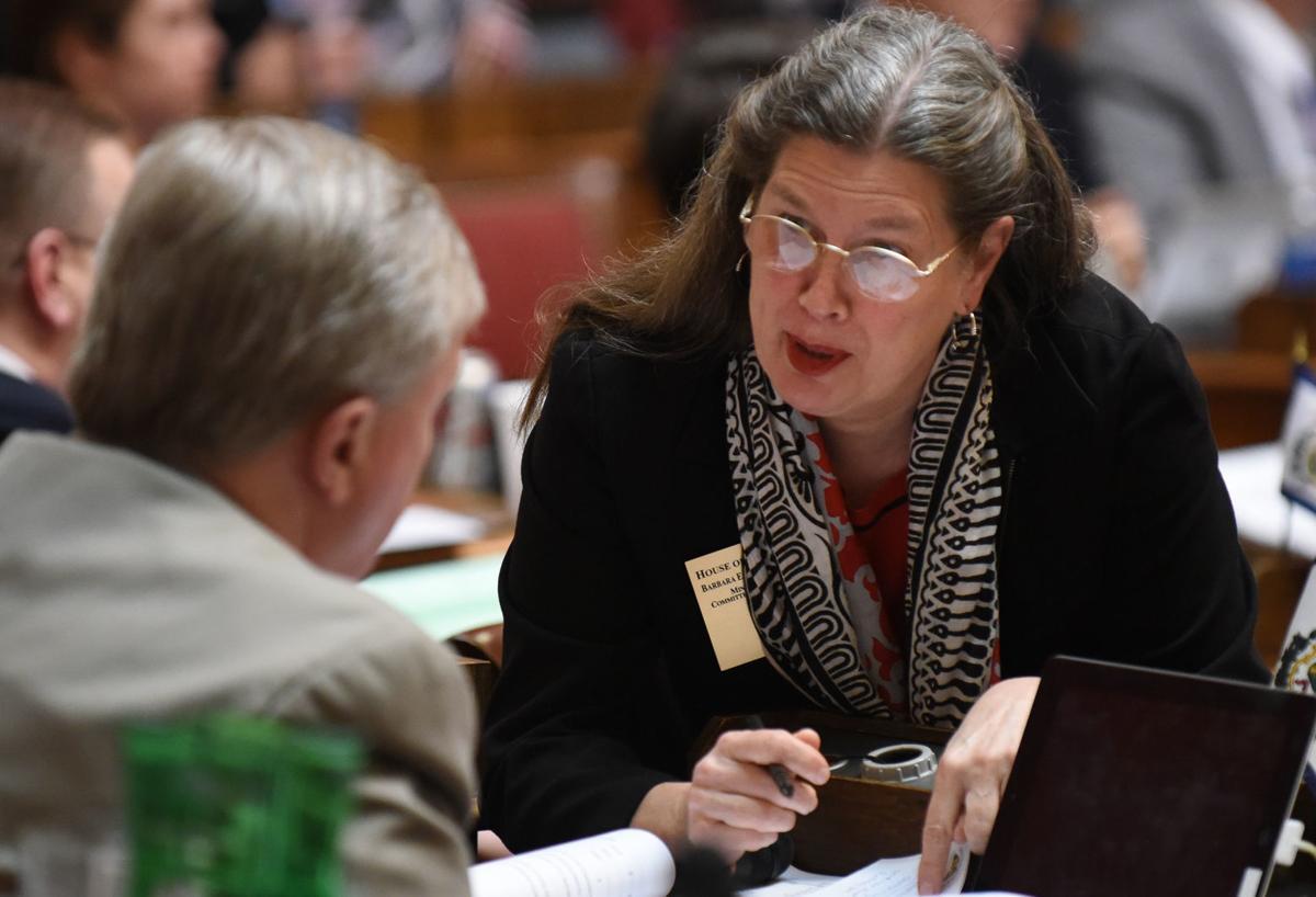 Fleischauer questions road bond bill