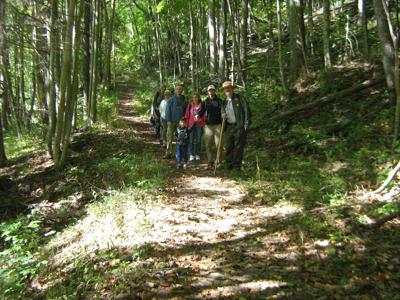 New River Gorge National Park and Preserve guided walks