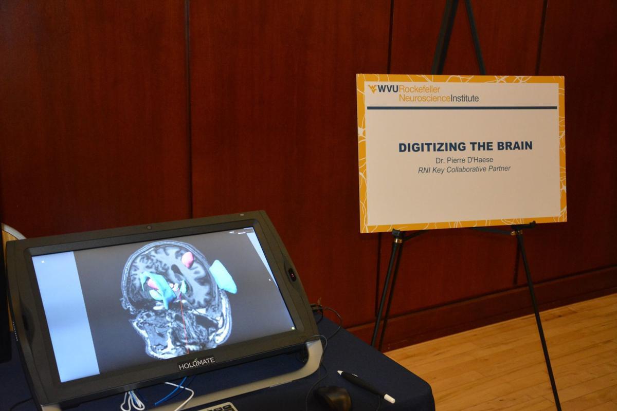 Digitizing the brain