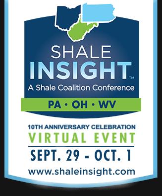 Shale insight 2020 logo