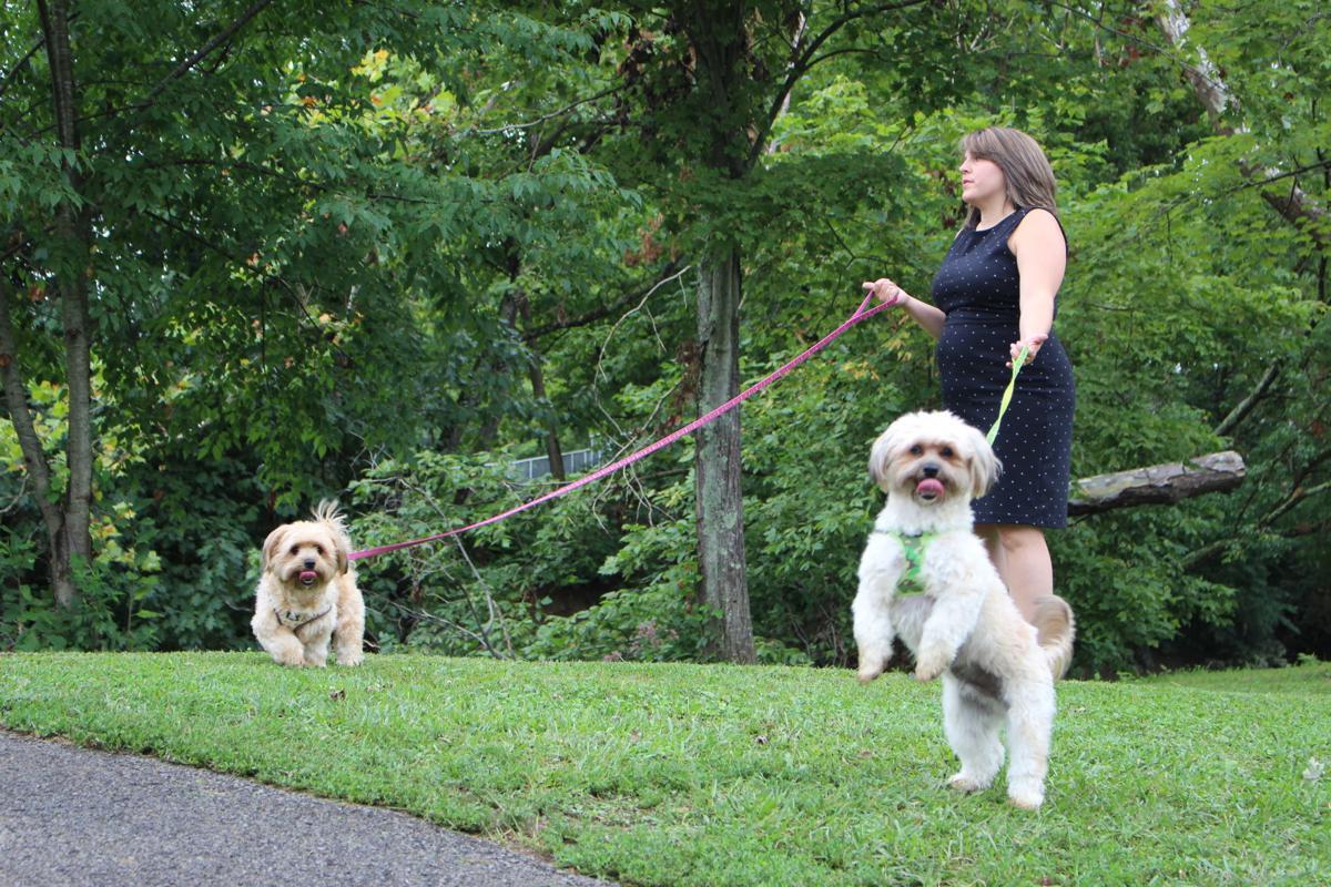 Dog walker Sierra Miller