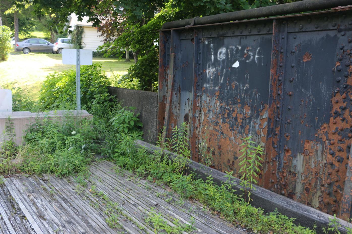 Bridge plants