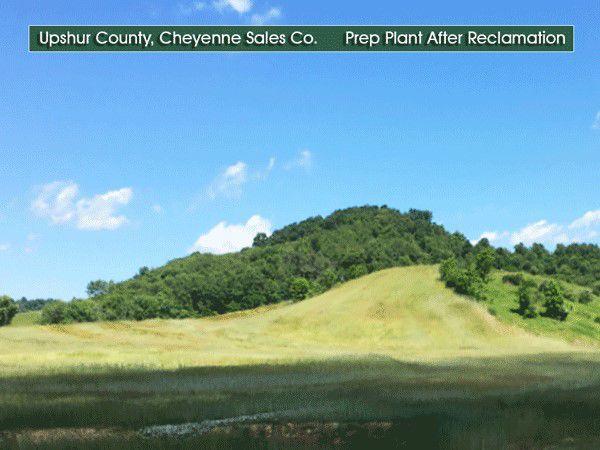 Cheyenne after.jpg