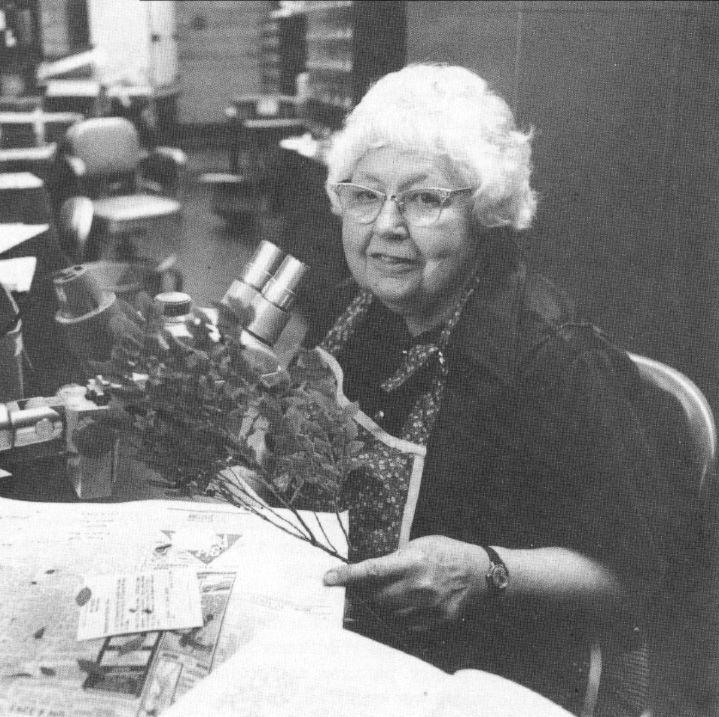 Elizabeth Ann Bartholomew, 1912-1985