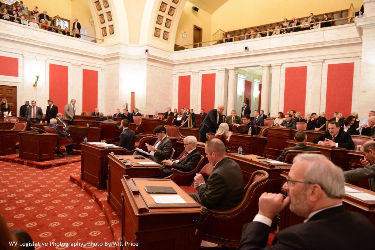 WV Senate 2017