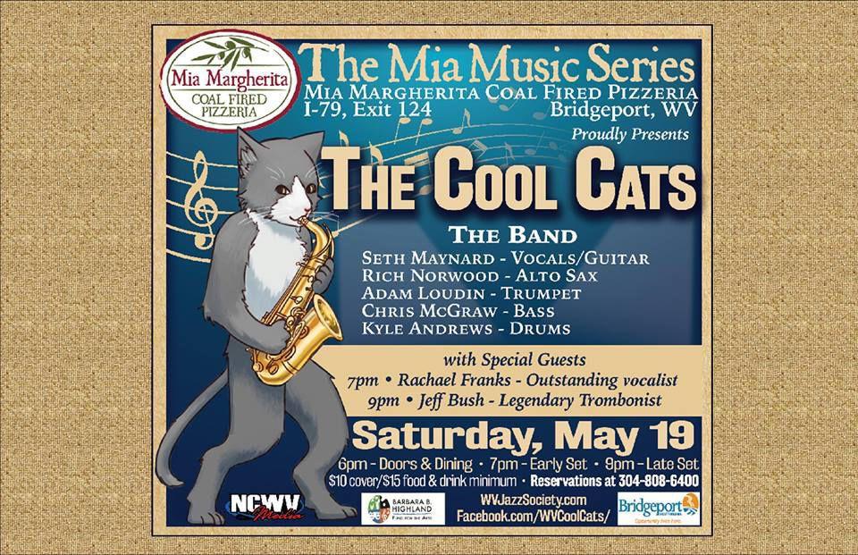 Cool Cats Mia logo