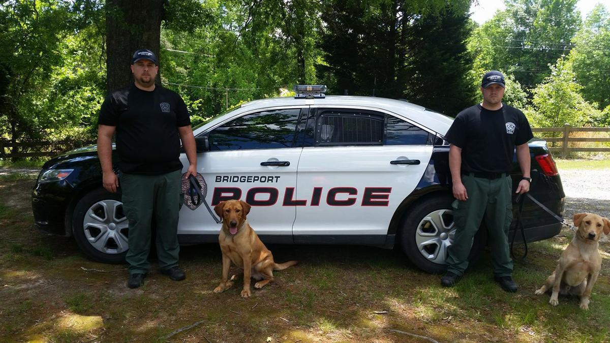Bridgeport K-9s and officers