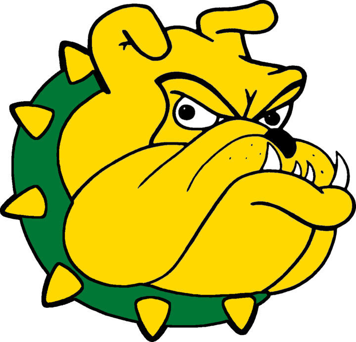 Doddridge County High Logo