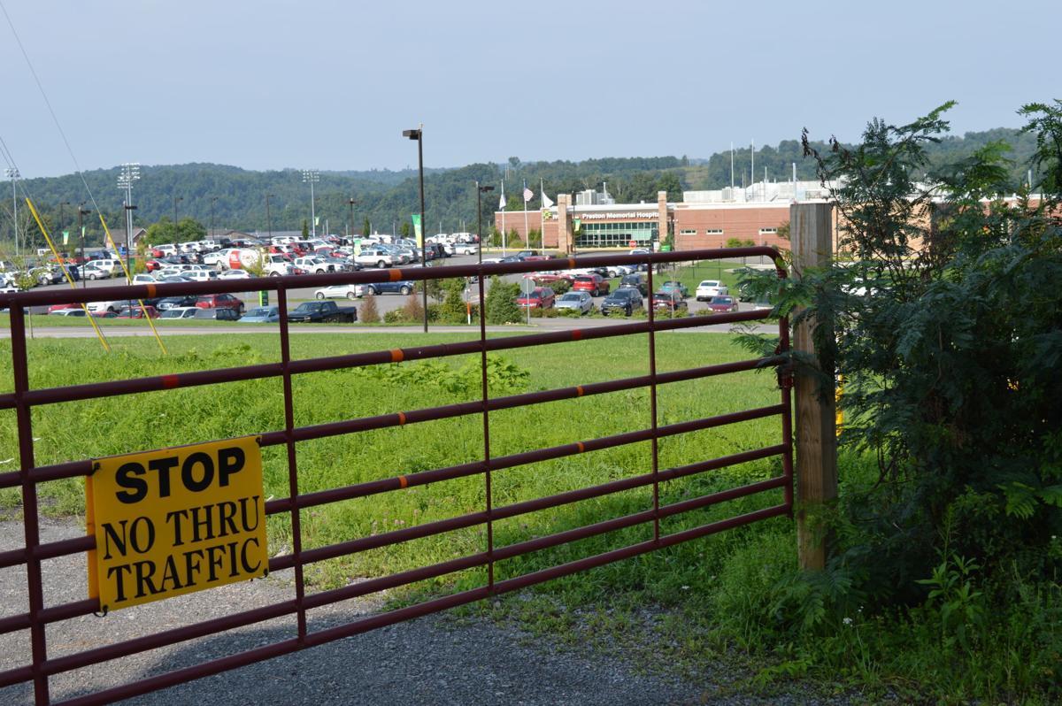 Pleasant Avenue Gate