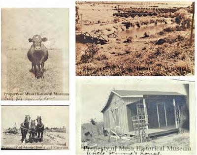 The Historic Crismon Farmstead