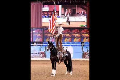 Arabian Horse Show available only online