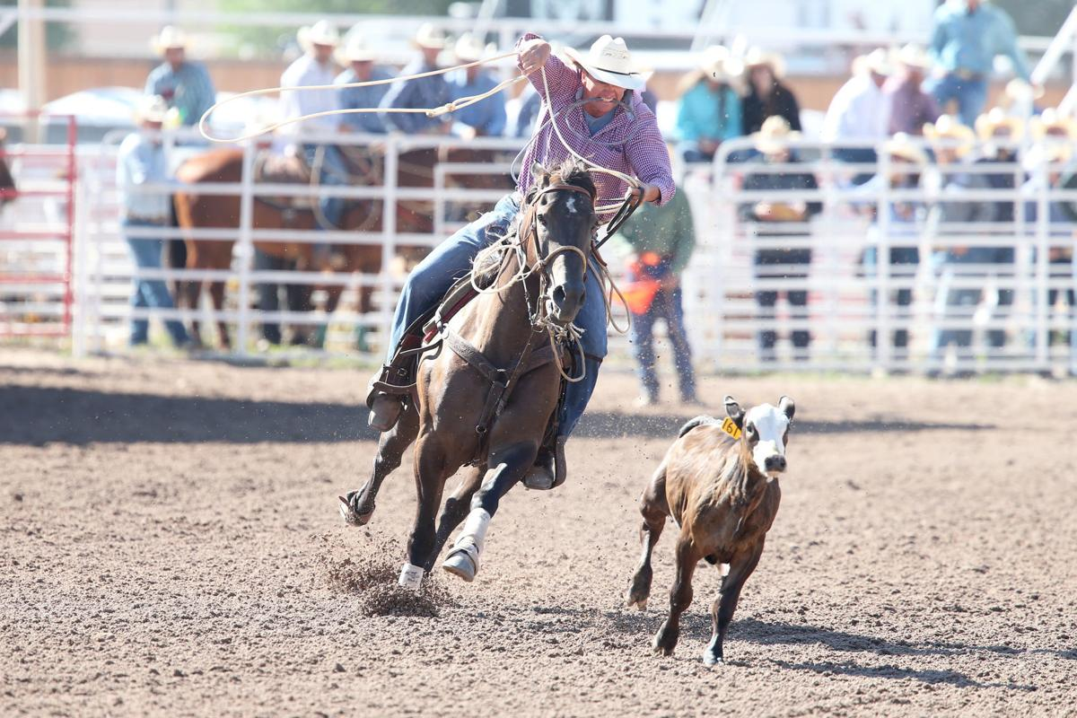 Cfd 2019 Tie Down Roping Slack 7 17 19 Cheyenne Frontier