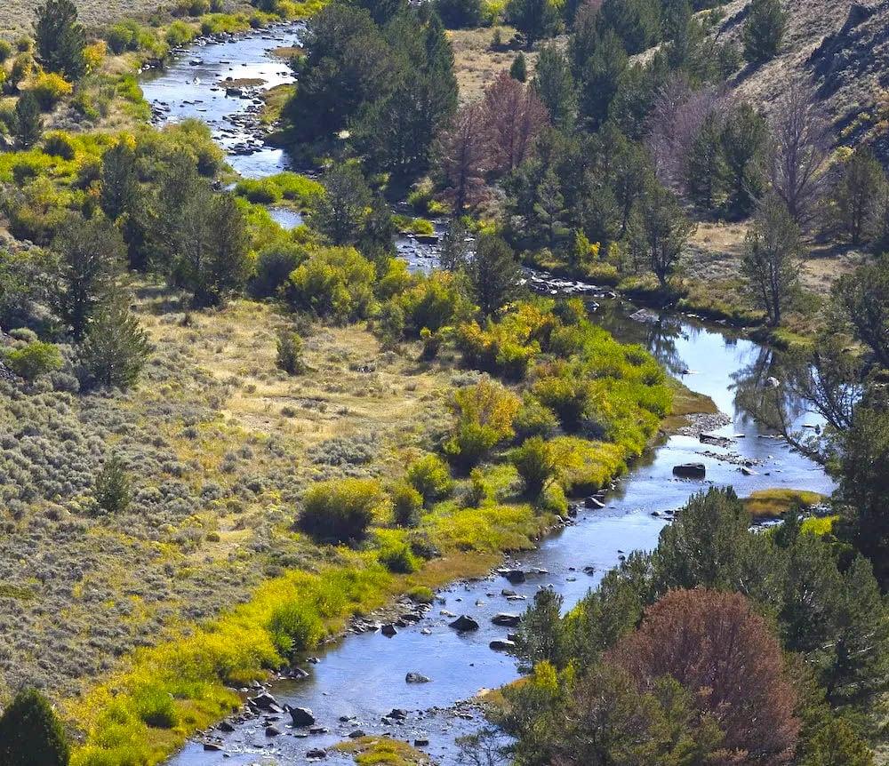 wilderness bill 1.jpg