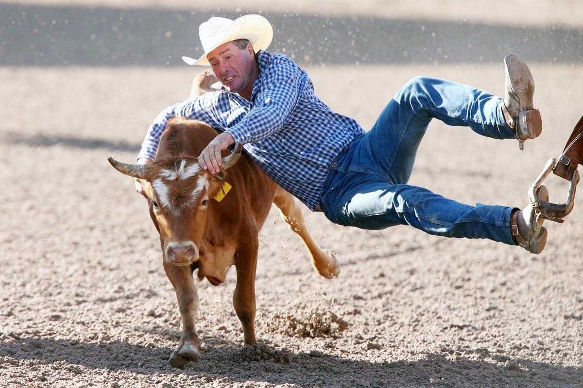 Cfd 2019 Steer Wrestling 7 17 19 Cheyenne Frontier Days