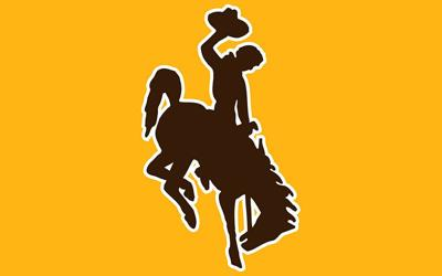 UW logo gold