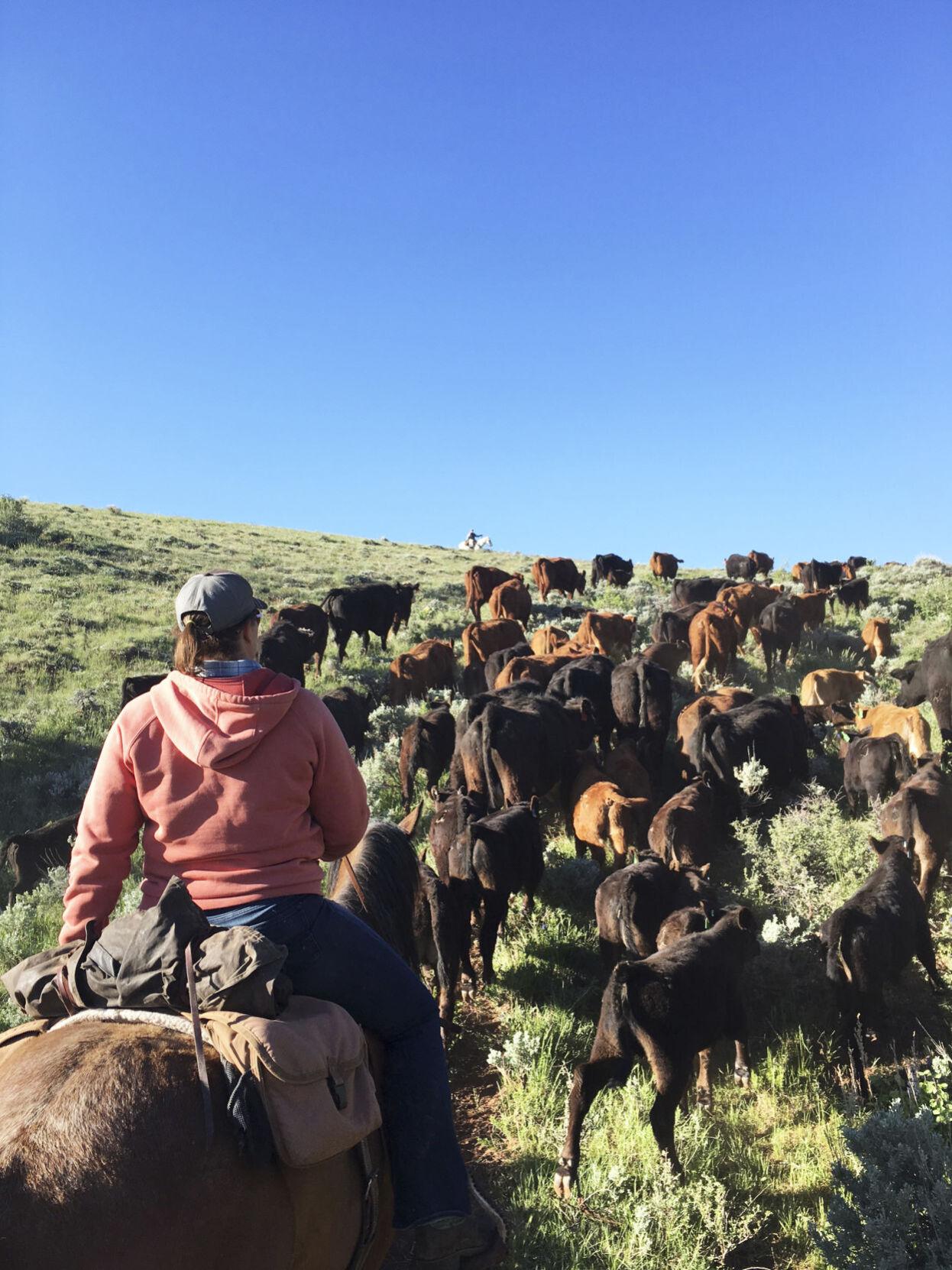 Leisl Carpenter-Laramie rancher No. 2