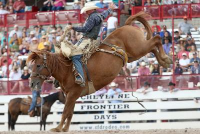 CFD rodeo 2019 file