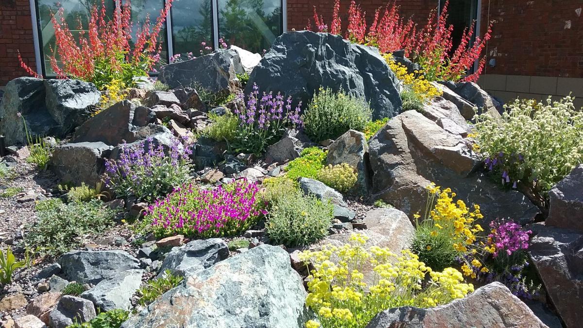 2019-07 Cheyenne Botanic Gardens, Barb Gorges.jpg