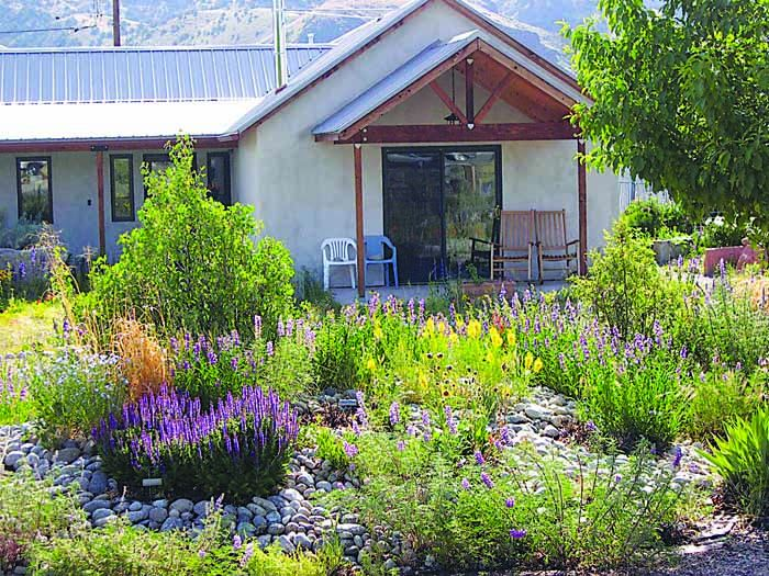 Wildscaping brings nature to your garden | Things To Do ...
