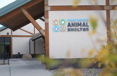 20181007_cheyenne animal shelter_jb_30.jpg