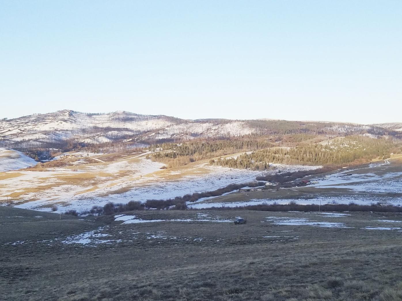 Sheep Mountain burn area
