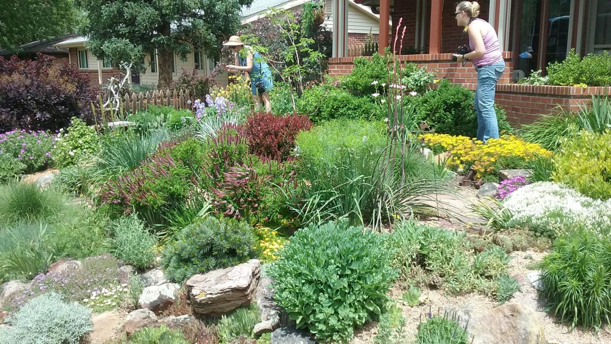 2019-07 Boley garden, Barb Gorges.jpg