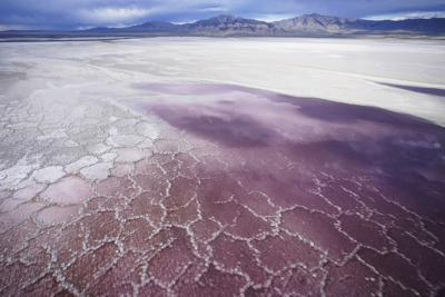 Wildlife, air quality at risk as Great Salt Lake nears low