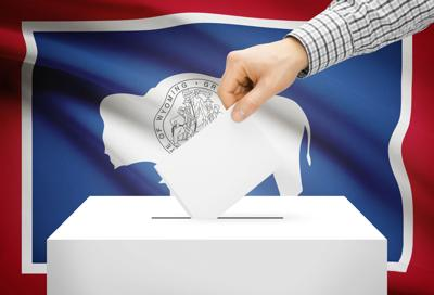 Voting STOCK.jpg