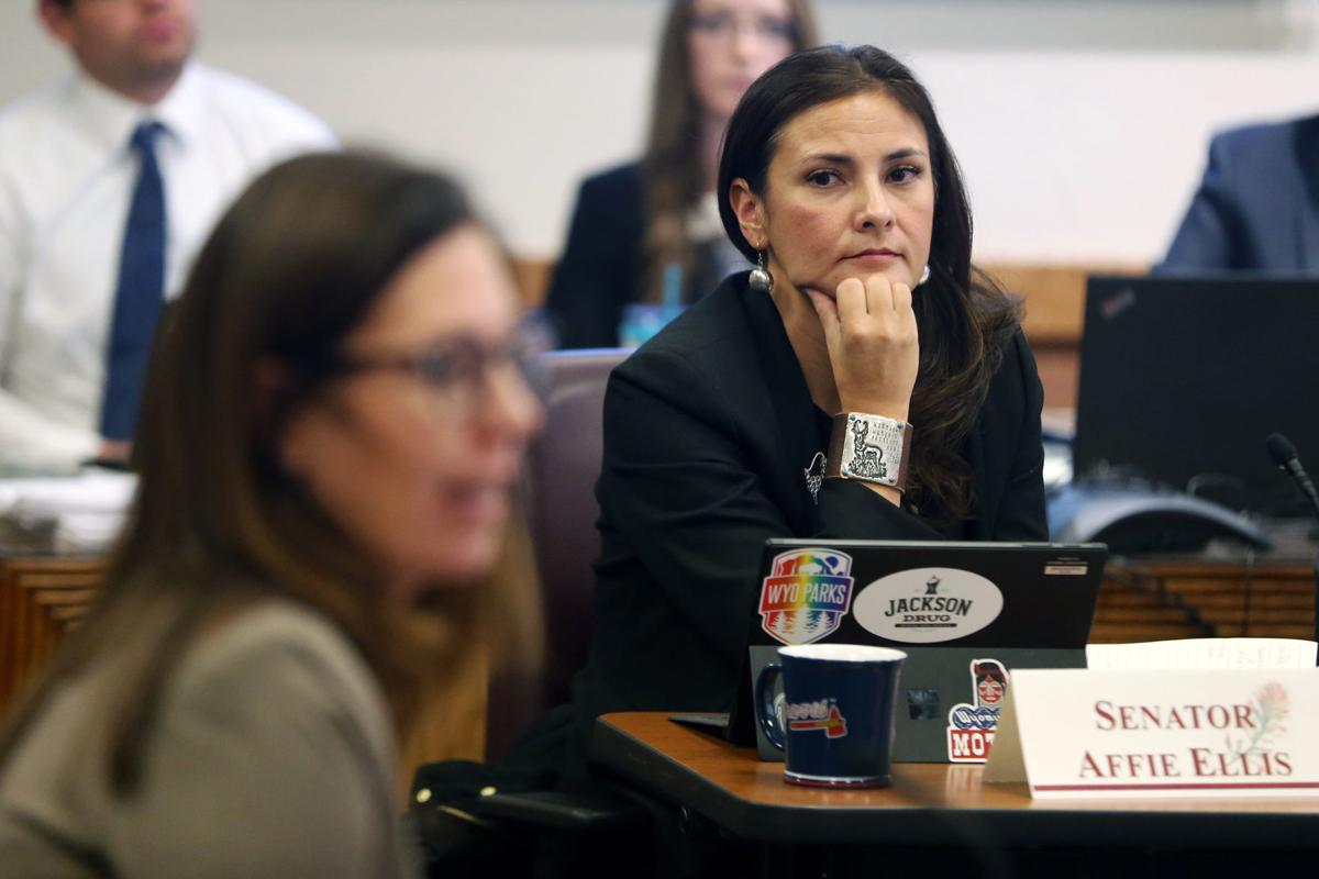 School safety in focus for education committee