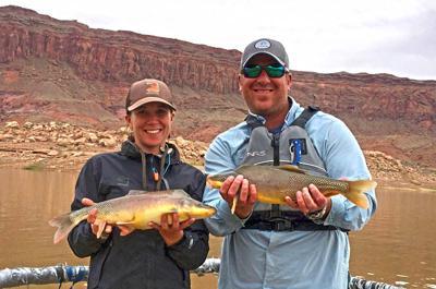 Endangered Fish Colorado River