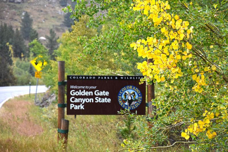 No evidence of bear attack at Colorado park