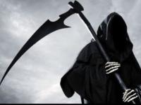 G. Reaper