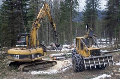 Lawmakers Back Timber Industry as a Way to Reduce Washington's Carbon Emissions