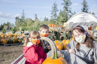 201015.news.pumpkinpatch.er1.jpg